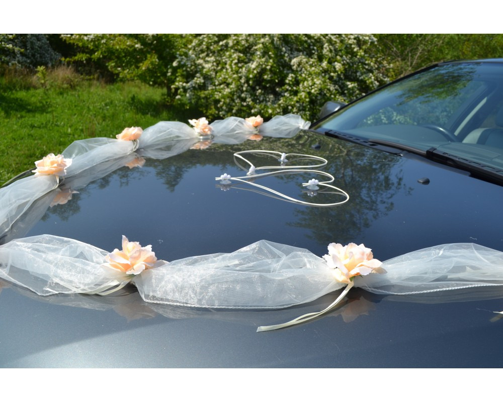 Enchanting funny wedding car decoration ideas image blue wedding wedding car decoration ideas reviews choice image wedding dress junglespirit Image collections